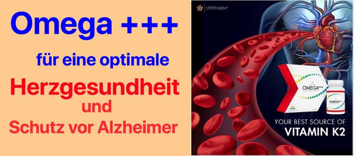 Omega 3 im Gehirn